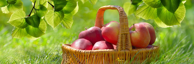 parklands-dining-apple